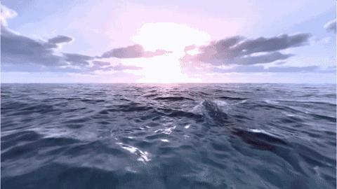 在VR里潜游深海,一种欲罢不能的蓝色鸦片!